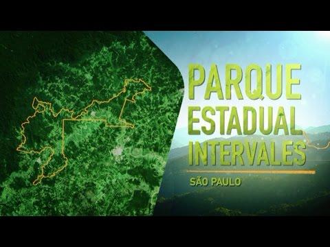 Parques de São Paulo: Intervales