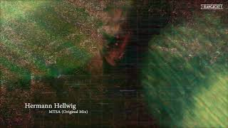 Hermann Hellwig - MTSA (Original Mix)