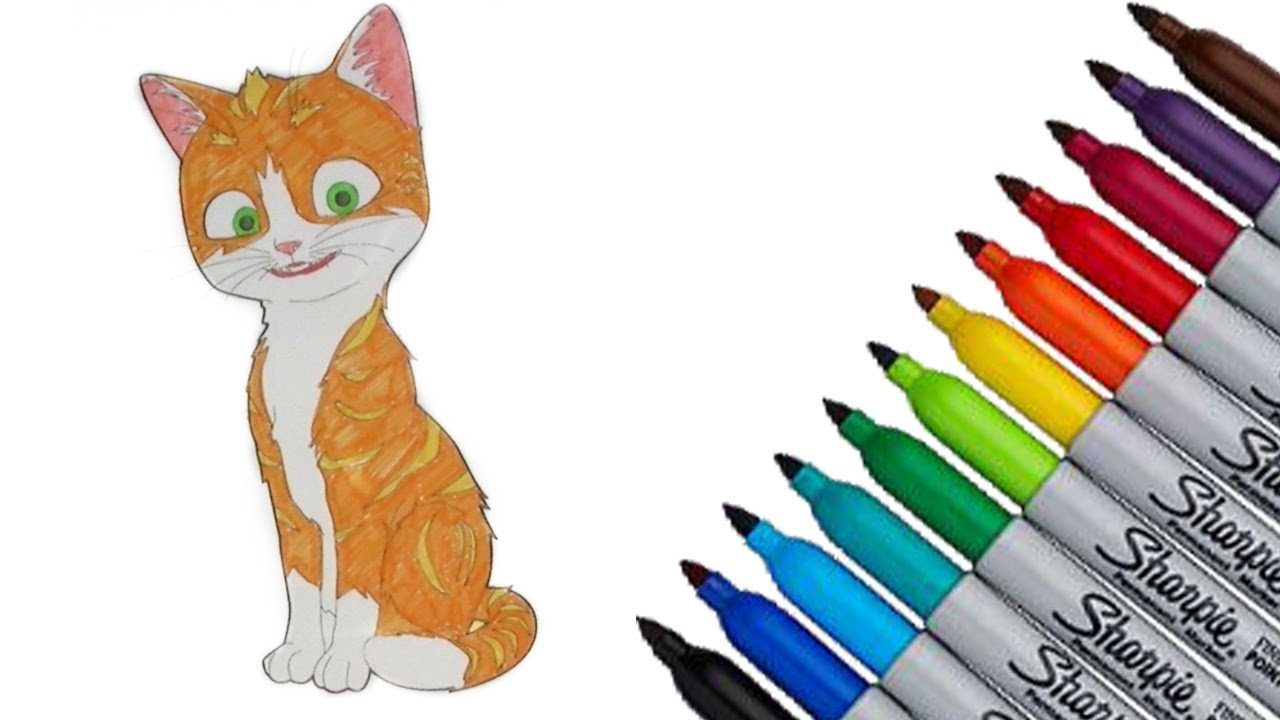 Thunder And The House Of Magic Coloring Page 2017 New HD Video For Kids