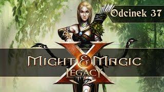 Zagrajmy w Might and Magic X Legacy PL - Święty Gaj! #37 GAMEPLAY PL