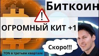 Биткоин ОГРОМНЫЙ КИТ +1 и TON  Телеграм уже в третьем квартале