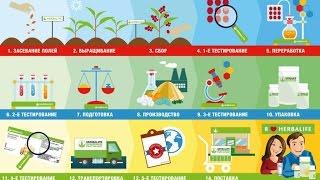 Полный цикл производства продуктов Гербалайф Herbalife(Herbalife берет на себя заботу о качестве продуктов и контролирует все этапы производства - от посаженного семе..., 2016-06-02T13:33:31.000Z)