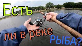 ЕСЛИ ЛИ В САМАРЕ РЫБА Осенняя рыбалка на реке СЕКРЕТНЫЙ МОНТАЖ В МИРЕ ЖИВОТНЫХ