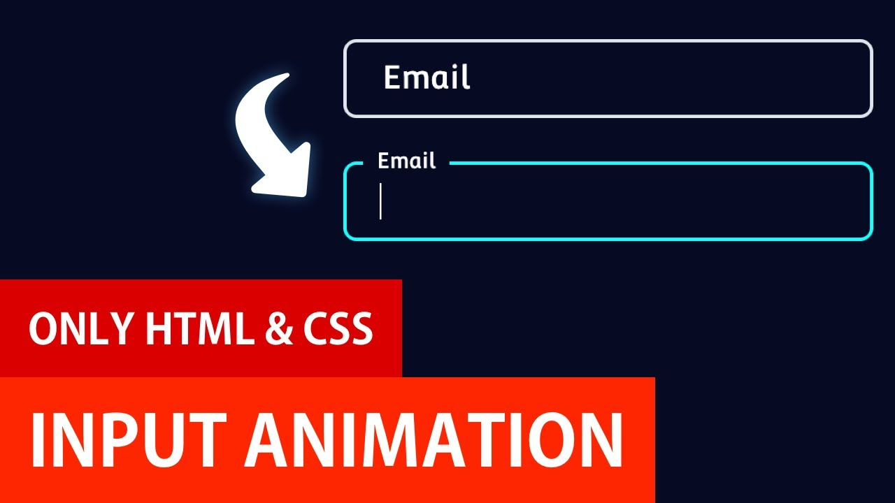 Input Animations with HTML and CSS   Input Label Animation