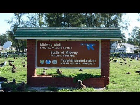 GAO: Midway Atoll's History and Habitat