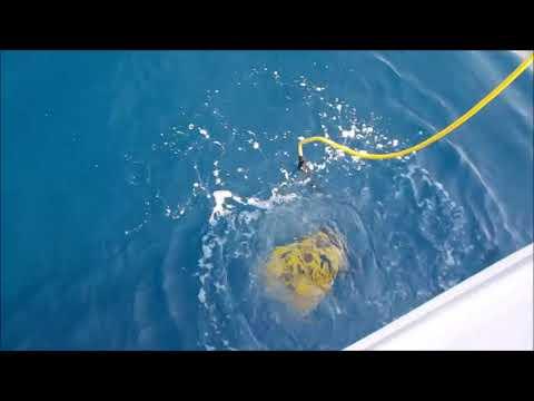 Part 2  In search of Sunken Treasure  ships