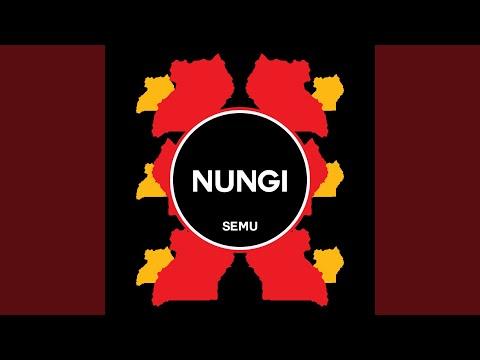 Nungi