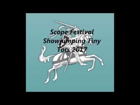 Cappagh Misty Tiny Tots Supreme Champion, Scope Festival 2017