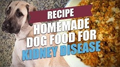 Homemade Dog Food for Kidney Disease Recipe (Simple and Cheap)