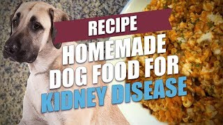 This DIY homemade dog food for kidney disease recipe contains only the ingredients that are healthy and safe for dogs with kidney problems. But please consult ...