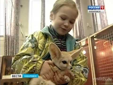 Лапушки зоопарк хабаровск