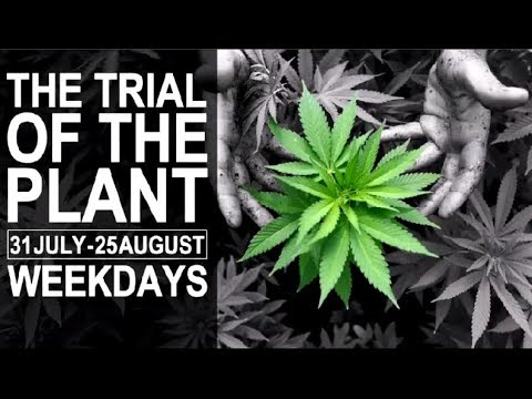 Trial of the Plant - Day 9