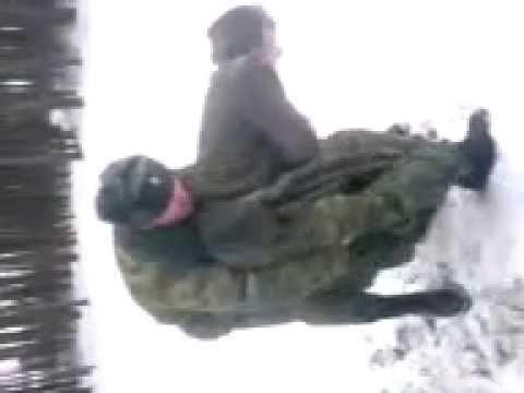 Русские парни развлекаются фото 644-787