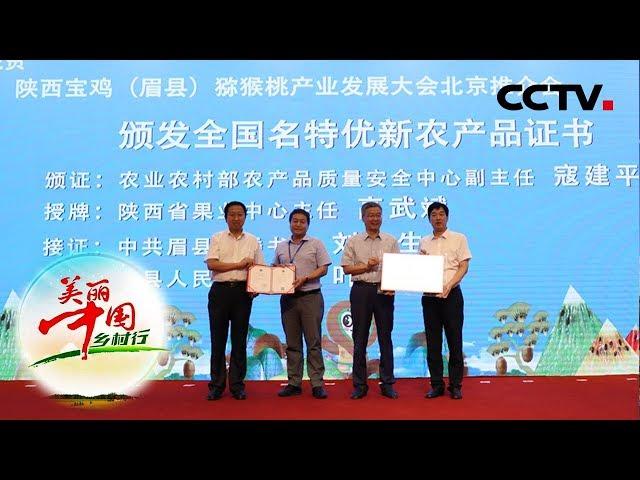 《产业助力脱贫-第八届中国·陕西宝鸡(眉县)猕猴桃产业发展大会》 20190822| CCTV农业