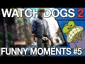 Watch Dogs 2 - Funny WTF PVP Moments #5