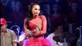 Video oplosan   yusnia zebro download MP3, 3GP, MP4, WEBM, AVI, FLV Oktober 2017