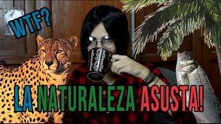 La Naturaleza ASUSTA! ft. John Lennon