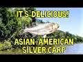 ASIAN CARP, How to Clean & Cook! Delicious Carp Recipe. Best Carp Recipe?