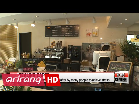 More and more Koreans are visiting 'healing' cafes to mend their stressed out souls
