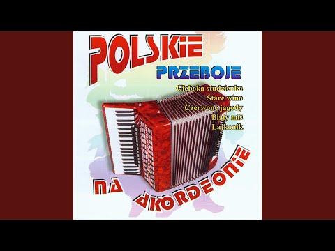 Various - Przeboje Polskiego Rocka - Urszula