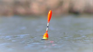 РЫБАЛКА НА КАРАСЯ Весенний бешеный клёв на поплавочную удочку крупным планом