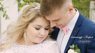 Свадебный клип -  Александр и Дарья. Красивая свадьба