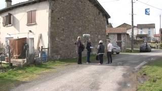 Haute-Vienne : quinze agneaux et quatre brebis sont morts lors d'attaques de chiens