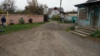 видео Заборы для дачи в Климовске недорого