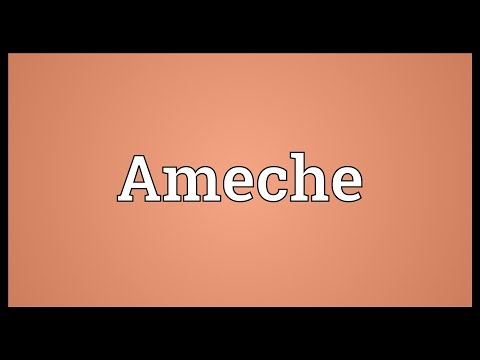 Ameche Meaning