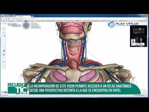 Recursos TIC - Conoce Zygote Body
