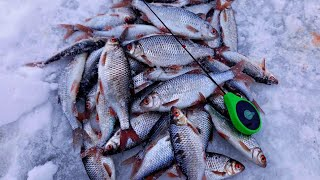 ПОСТАВИЛ ЭТУ БЕЗМОТЫЛКУ И ПОПЁРЛО Ловля плотвы зимой на реке 2021