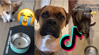 Putting Your Dog On A Diet Challenge🥺(Tik Tok Compilation😂) *MUST WATCH*
