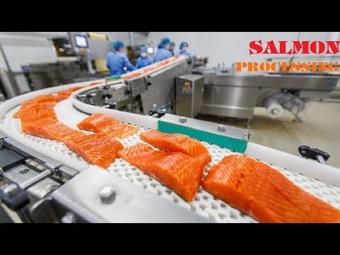 Amazing Food Processing Machines SALMON Factory ★ Fast Workers Food Cutting Machines NEW Inventions