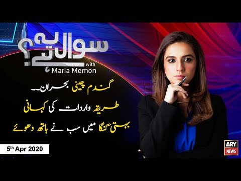 Maria Memon Latest Talk Shows and Vlogs Videos