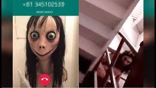 Momo: Was steckt hinter dem weltweiten WhatsApp-Horror? Und: Ninja! Im Internet für tot erklärt