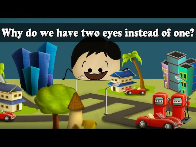 why do we have two eyes rather The reason we normally do not notice our blind spots is because, when both eyes are open, the blind spot of one eye corresponds to retina that is seeing properly in the other eye here is a way for you to see just how absolutely blind your blind spot is.