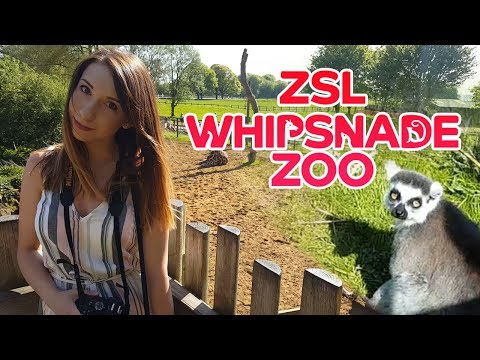 ZSL Whipsnade ZOO Tour, Dunstable