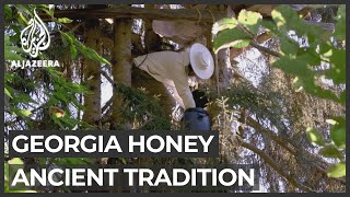 Georgians reviving ancient honey-harvesting tradition