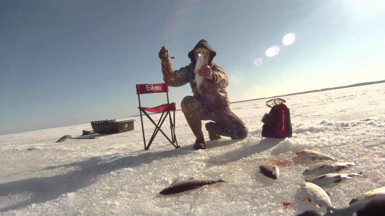 Northern minnesota april 2014 ice fishing winni cisco for Cisco s sportfishing fish count