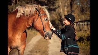 Фотосессии с лошадьми в Кобрине. Осень 2017