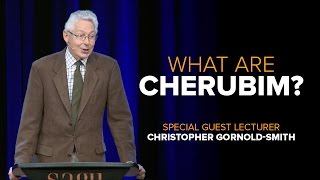 What are Cherubim?