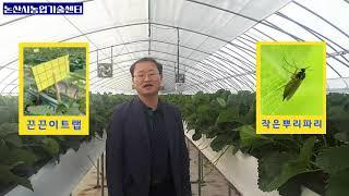 딸기 수경재배시 하우스시설 관리요령