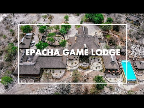 Amazing Epacha Game Lodge & Spa in Namibia. Luxury Safari Experience! (includes drone shots)