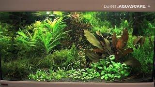 Planted aquariums of Heimtiermesse 2015, Hannover - part 11