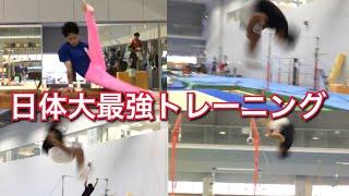 【日体大】大学体操選手たちの本気のグループトレーニング【インカレまで76日】