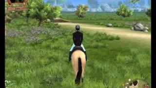 Horse star