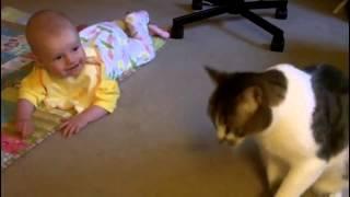 Кошка и маленький ребенок Прикол,Смех Ржач.