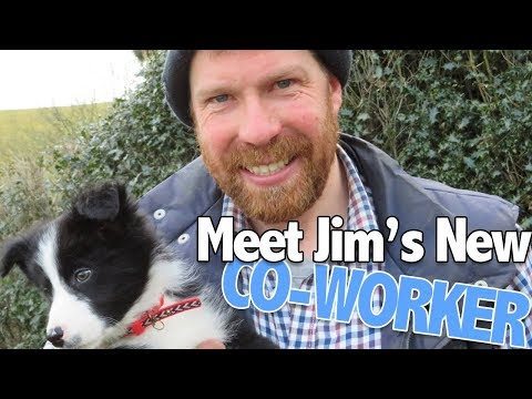 Farmer Jim's Got A New Co-Worker   The Farm   BBC Scotland