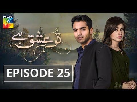 Tu Ishq Hai Episode #25 HUM TV Drama 20 February 2019