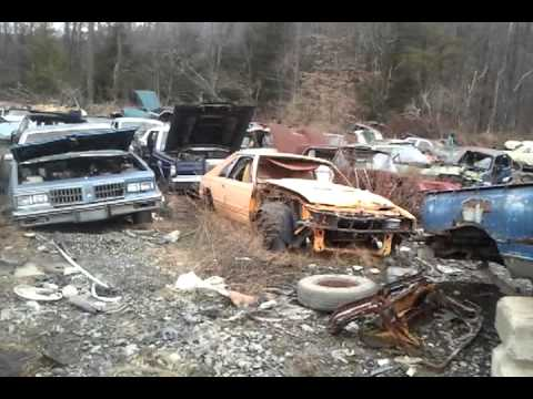 Antique car junkyard tour